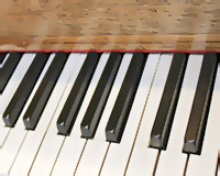 View of composer Paul William's piano keyboard showing one octave above middle C